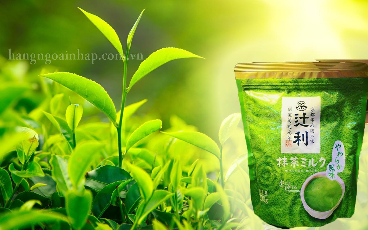 Bột sữa trà xanh của nhật bản Matcha Milk 200g