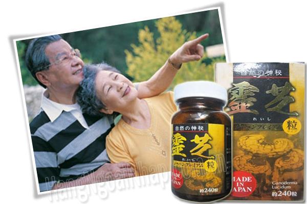 Nấm Linh Chi Đen Cô Đặc Hộp 240 Viên Nhật- Nấm linh chi đen nhật bản