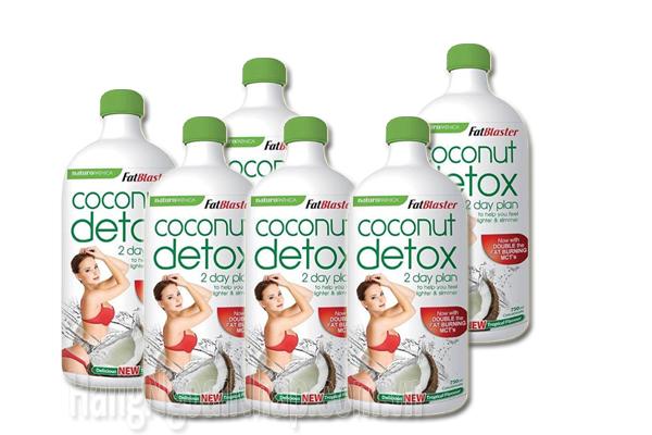Chia Sẽ Phương Pháp Giảm Cân Hiệu Quả Cao Cùng Coconut Detox 2 Day Plan